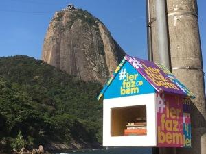 Projeto Ninho de Livros no Rio de Janeiro